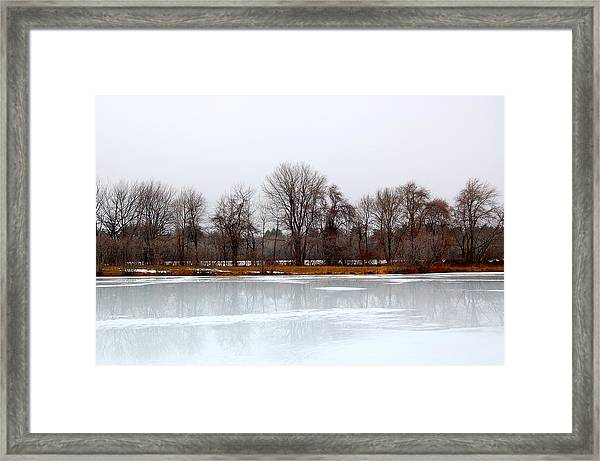 Stark Beauty Framed Print