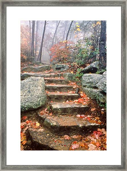 Steps Cloudland Canyon Framed Print