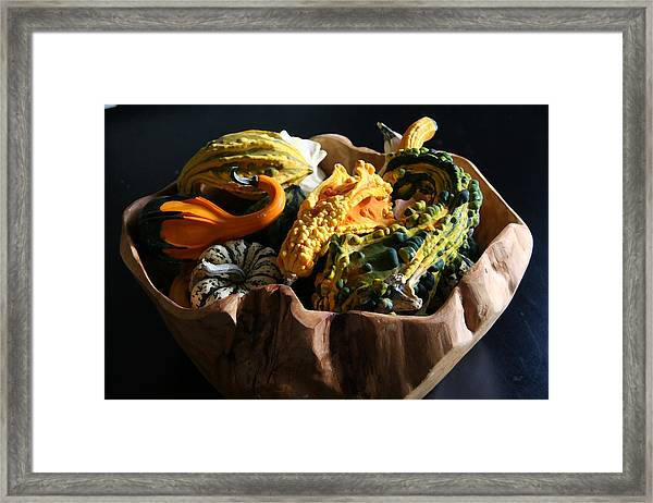 Still Life With Gourds Framed Print