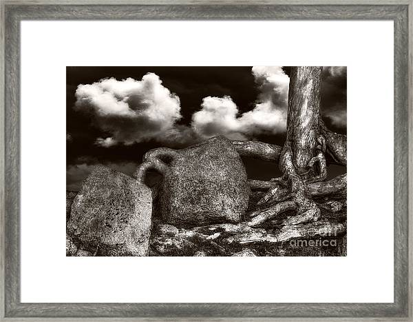 Stones And Roots Framed Print