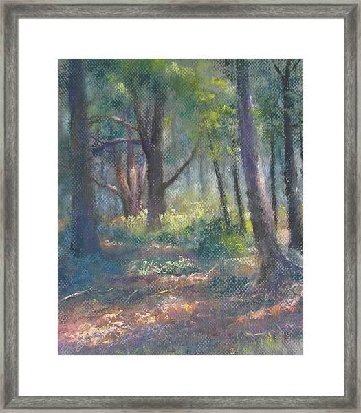Study For Woodland Interior Framed Print