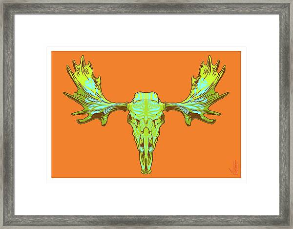 Sugar Moose Framed Print