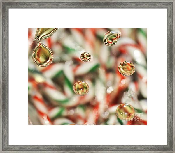 Sugar On Canes Framed Print