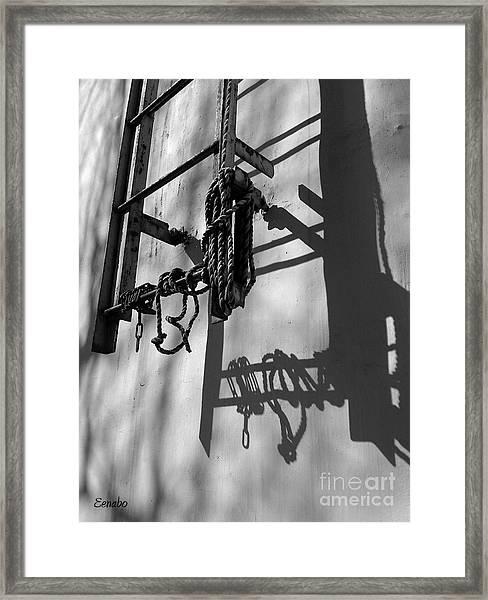 Sun Play Framed Print