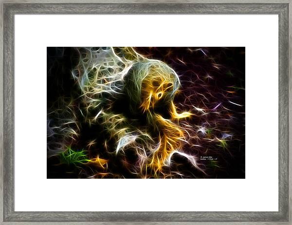 Take A Bow - Fractal - Robbie The Squirrel - Fractal Framed Print