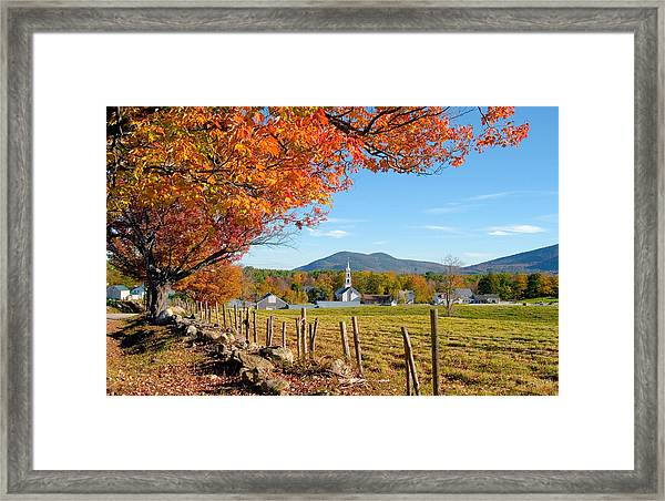 Tamworth Trees Autumn Framed Print