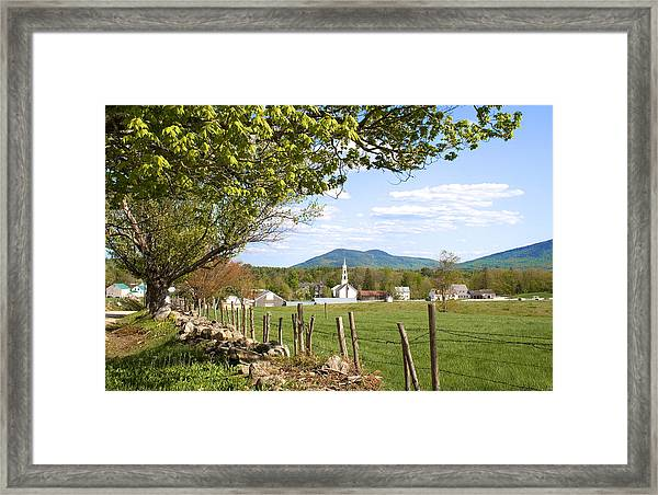 Tamworth Trees Summer Framed Print
