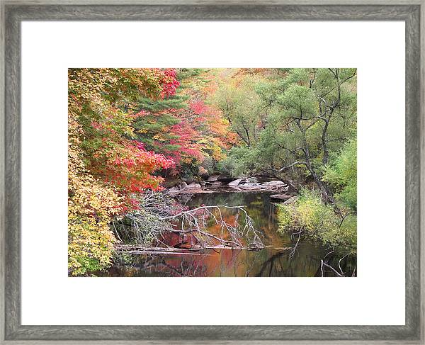 Tanasee Creek In The Fall Framed Print