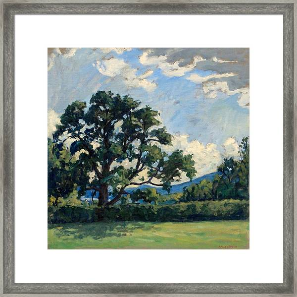 Tanglewood Afternoon Framed Print