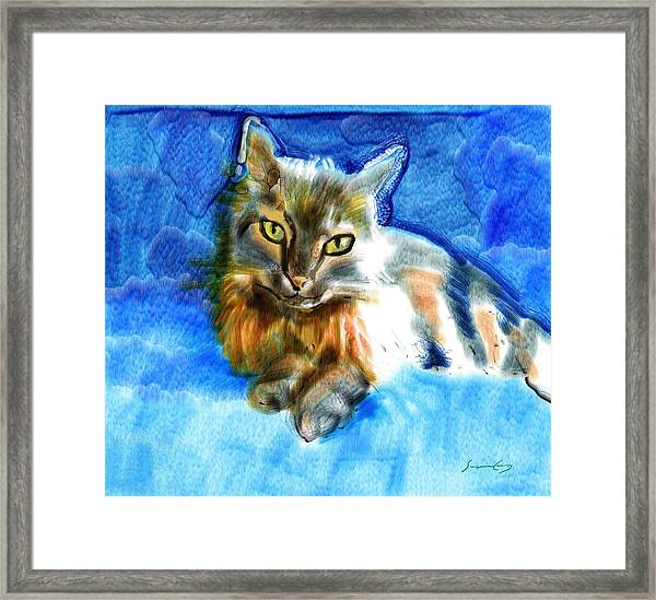 Tara The Cat Framed Print