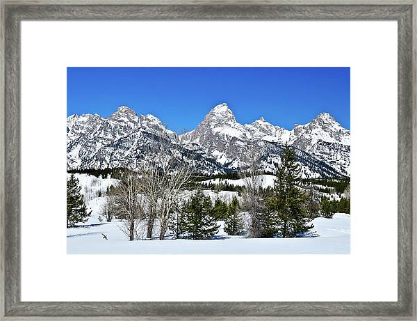 Teton Winter Landscape Framed Print