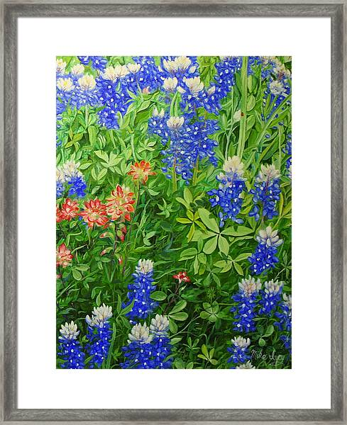 Texas Blues Framed Print