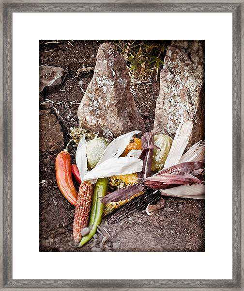 Albuquerque, New Mexico - Thanksgiving Framed Print