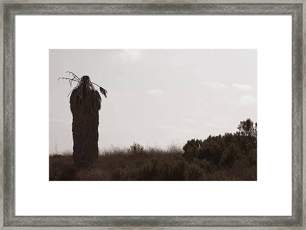 Framed Print featuring the photograph The Chief by Lorraine Devon Wilke