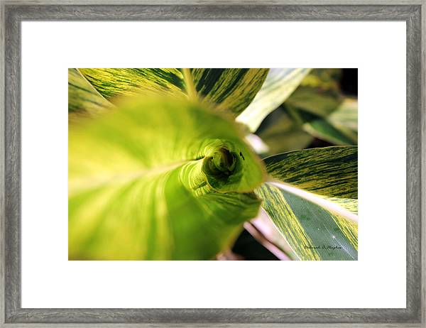 The Climb Out Framed Print