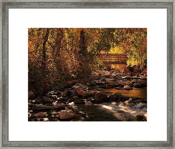 The Color Of Autumn Framed Print by Gene Praag