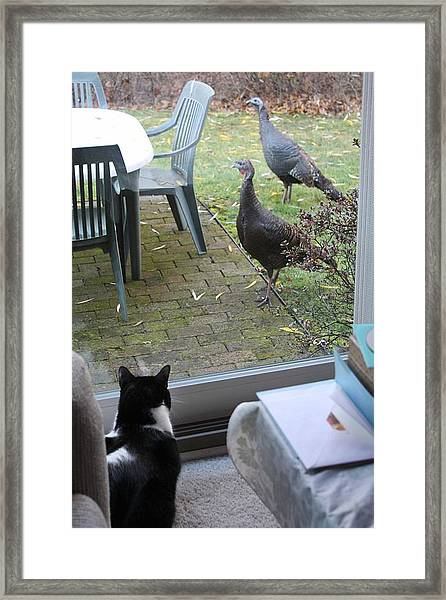 The Day Before Thanksgiving Framed Print