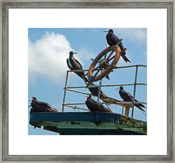 The Frigate Crew Framed Print