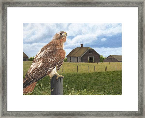 The Grounds Keeper Framed Print
