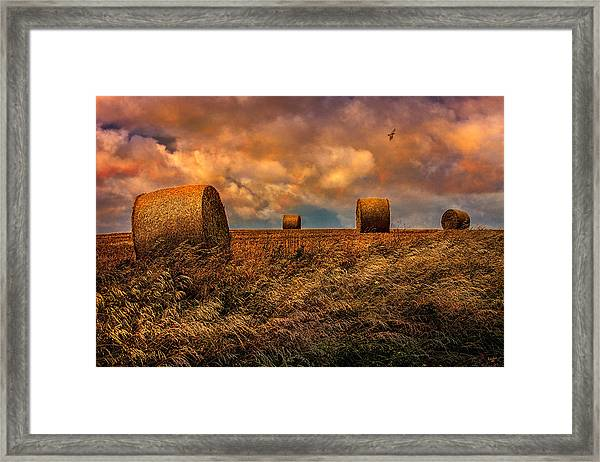 The Hayfield Framed Print