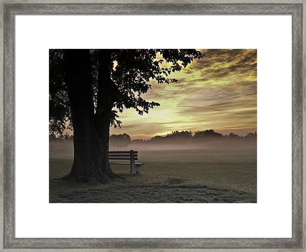 The Morning Golden Light Framed Print
