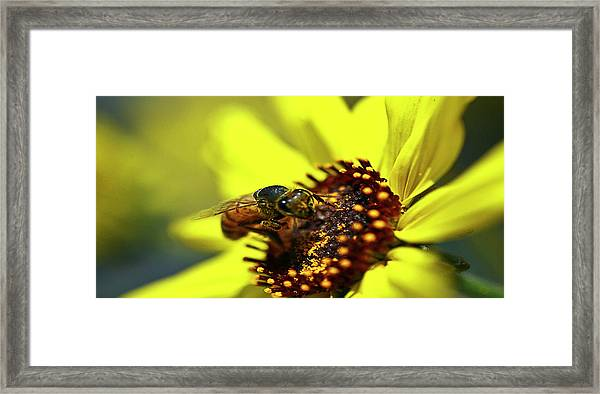 What Do You Want Framed Print by Gilbert Artiaga