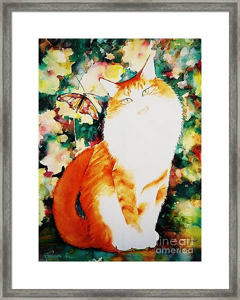 The Persian Boy Framed Print