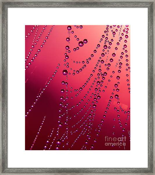 The Red Drops Framed Print