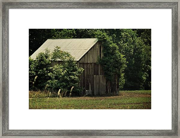 The Summer Barn Framed Print
