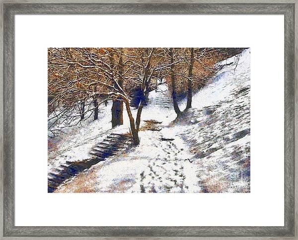 The Winter Park Framed Print