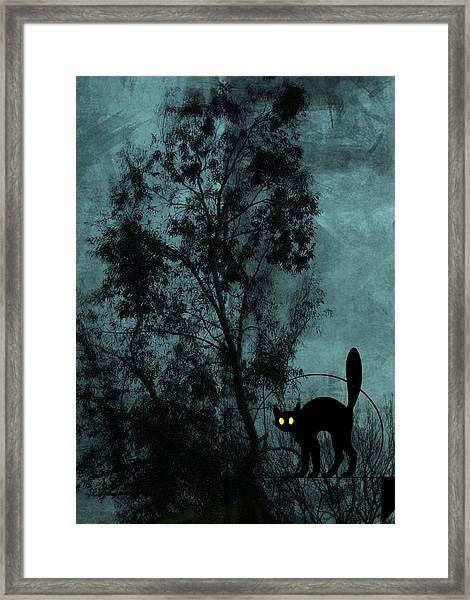 The Witch's Cat Framed Print