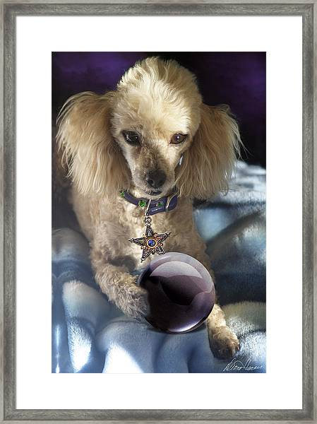 The Wizard Of Dogs Framed Print