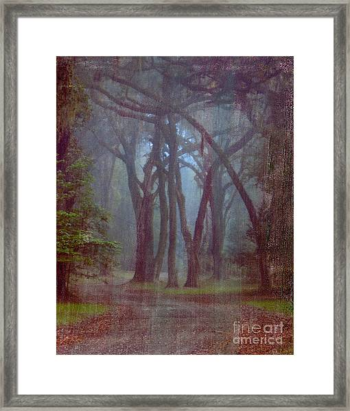 Three Sisters Framed Print