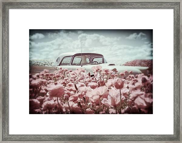 Thunderbird Classic Framed Print by Donna Pagakis