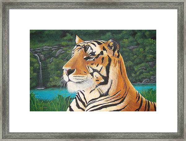 Tiger Falls Framed Print by Jeffrey Oldham