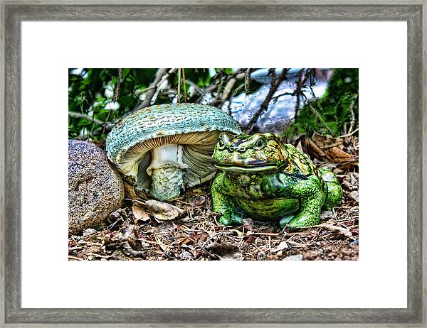 Toadstool Umbrella Framed Print