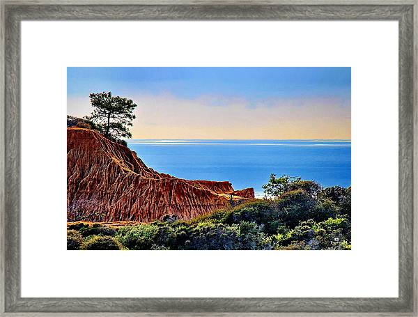 Torrey Pine Look Out Framed Print