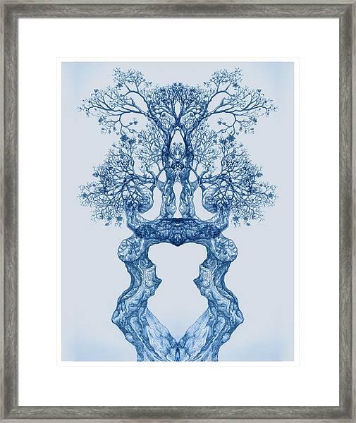Tree 14 Blue 2 Framed Print