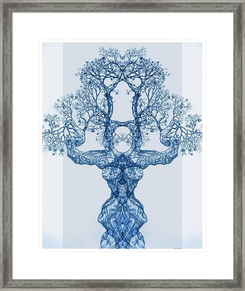 Tree 14 Blue 4 Framed Print