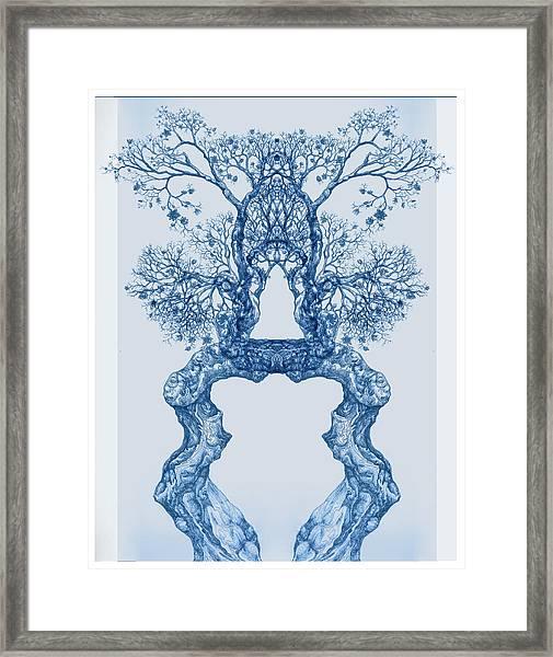 Tree 14 Blue 8 Framed Print