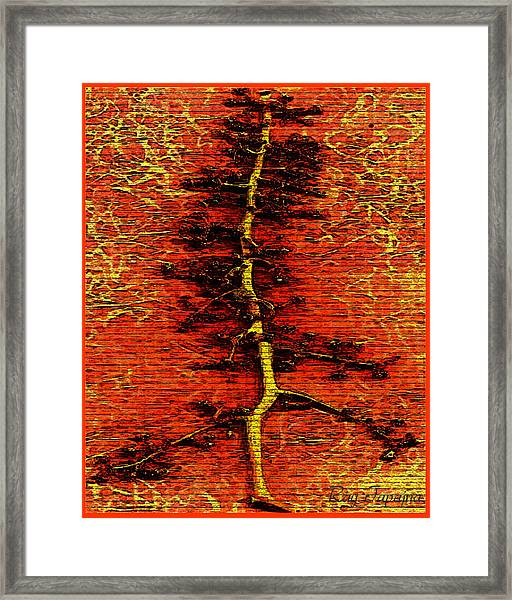 Tree Of Life Framed Print by Ray Tapajna