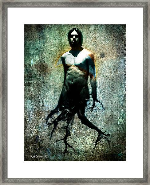 Tree Walker Framed Print