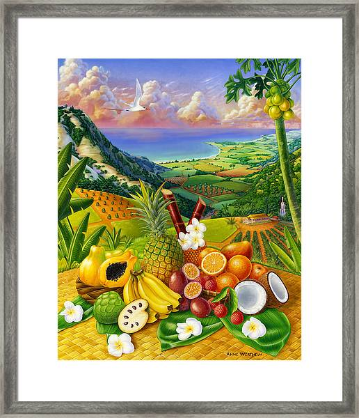 Tropical Fruit Medley Framed Print