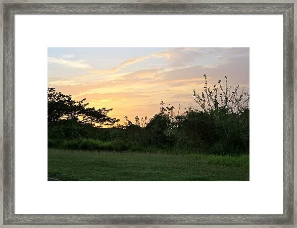 Tropical Sunrise Framed Print
