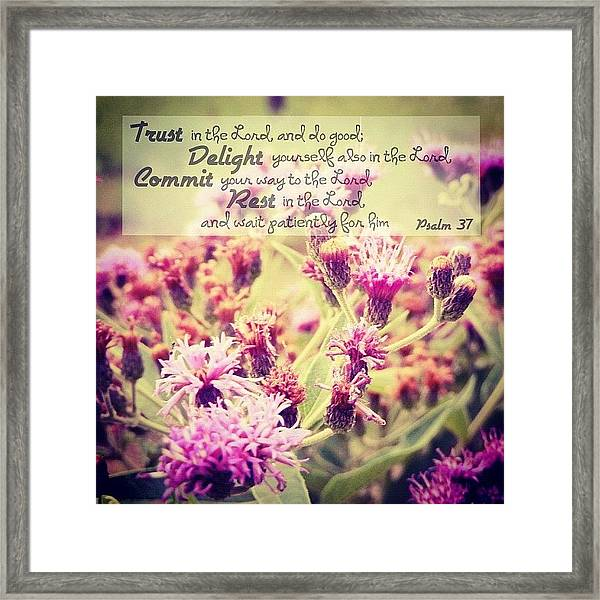 Trust, Delight, Commit, Rest. Simple As Framed Print