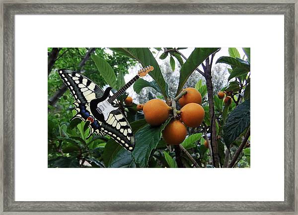 Framed Print featuring the pyrography Tutti Frutti by Eric Kempson