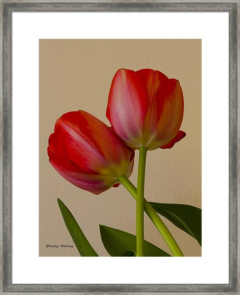 Twin Tulips Framed Print
