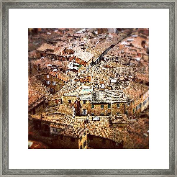 Under The Tuscan Sun.. #siena #rooftops Framed Print