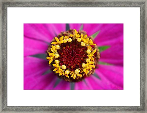 Unforgettable... Framed Print