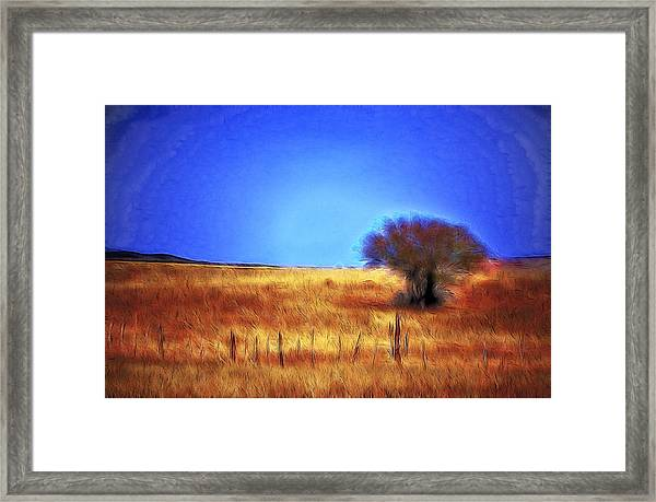 Valley San Carlos Arizona Framed Print